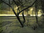 Ночь, зима