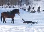 Павший солдат и его верный конь
