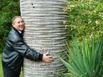 Пытаюсь обнять пальму