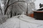 Выпал снег ...