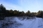 Утро начала зимы.