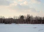 Мартовский пейзаж...