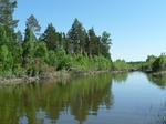 Тихая заводь на реке Оке.Иркутская область.